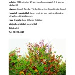 2-tura-page-001